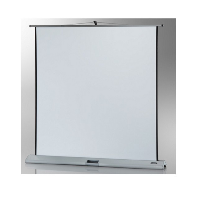 Roche 1:1 Professional Portable Floor Screens with Integrated Pole Support