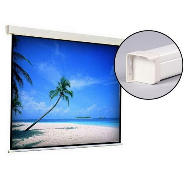 Roche 1:1 Quality Manual Projection Screens